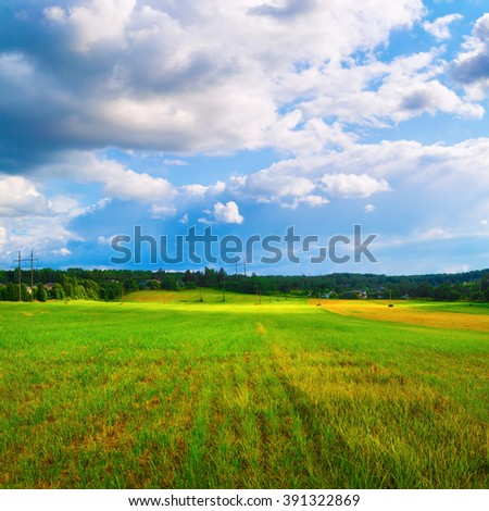 Bright sunny day in the countryside. Rural landscape. Blue sky with cumulus clouds and a field of green grass.