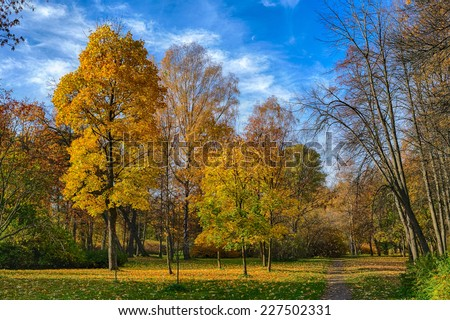 bright sunny landscape with autumn trees in the park - stock photo
