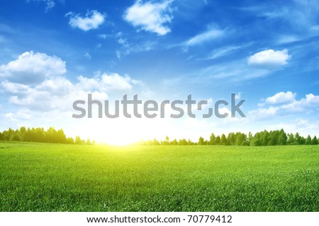 Bright sunset over green field.