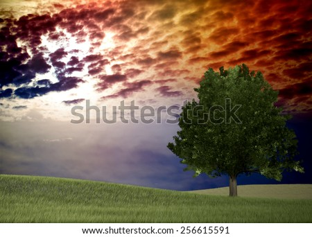 Bright sunset over green field for adv or others purpose sue - stock photo