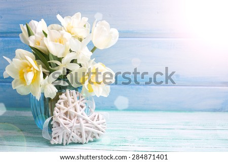 Bright white daffodils and tulips  flowers in blue vase and white heart in ray of light  on turquoise  painted wooden planks against blue wall. Selective focus. Place for text.  - stock photo