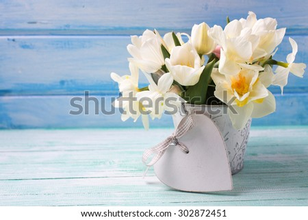 Bright white daffodils and tulips  flowers in bucket and decorative heart on turquoise  painted wooden planks against blue wall. Selective focus. Place for text.  - stock photo