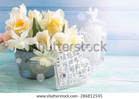 Bright white daffodils and tulips  flowers in bucket, decorative heart and candles in ray of light on turquoise  painted wooden planks against  blue wall. Selective focus.  - stock photo