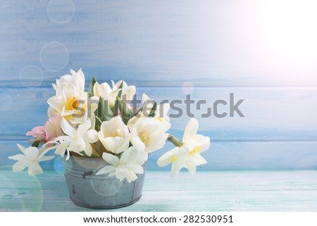 Bright white daffodils and tulips  flowers in vintage bowl in ray of light  on turquoise  painted wooden planks against  blue wall. Selective focus. Place for text.   - stock photo