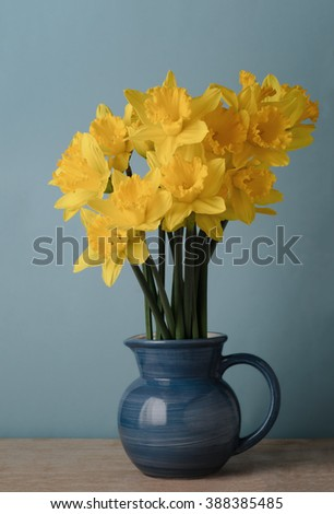 Bright yellow daffodils in blue enamel jug on wood table with blue background.  - stock photo