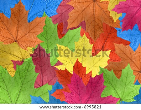brightly colored leaves - stock photo