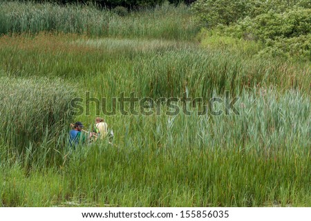 BRIGHTON, CANADA - JULY 12: A couple canoeing in a marsh on July 12, 2013 in Presqu'ile Provincial Park, Ontario.