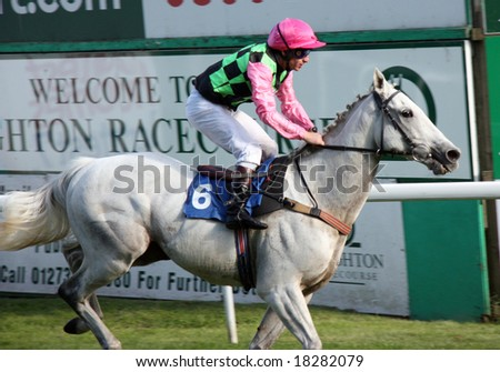 BRIGHTON RACECOURSE - SEPTEMBER 29: Racehorse Summer Recluse finishing third place and ridden by Jockey T. Quinn on September 29, 2008. - stock photo