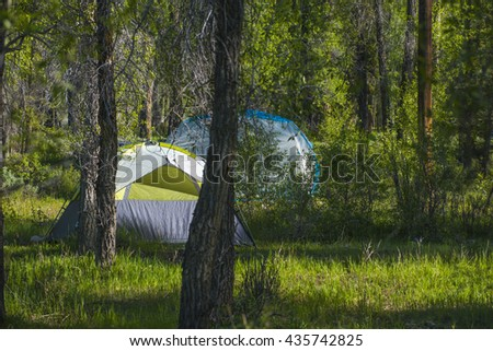 Brilliant green campground camp site with dome camping tent sun light summer - stock photo