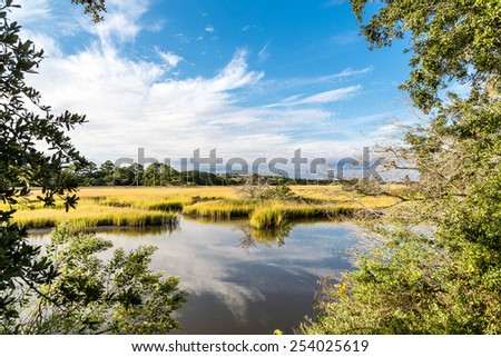 Brilliant Green Wetland Marsh Grass Growing Under Blue October Skies - stock photo
