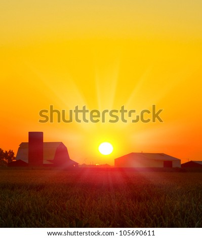 Brilliant orange sunrise over a Corn field in Iowa, and barn with a bright yellow sun on a cool fall morning. - stock photo