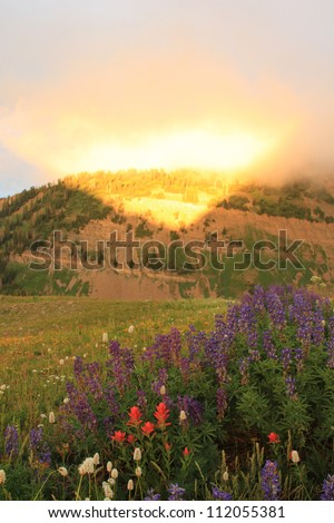 Brilliant sunlight after a summer storm, Mount Timpanogos, Utah, USA. - stock photo