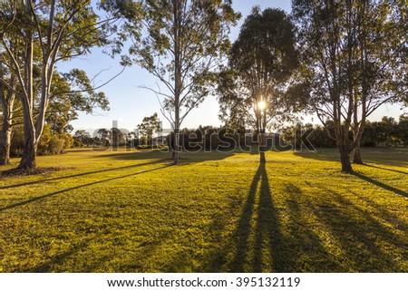 Brisbane City Park - stock photo