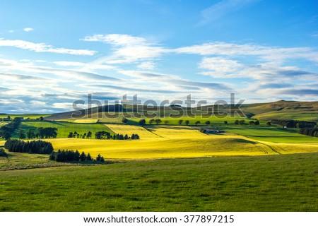 British landscape in Summer - stock photo