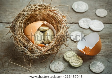 British Pound Coins with Bird Nest and Broken egg - stock photo