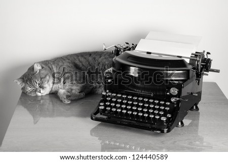 British sorthair cat and vintage old typewriter on table desaturated photo - stock photo
