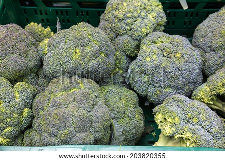 Broccoli at vegetable market. - stock photo