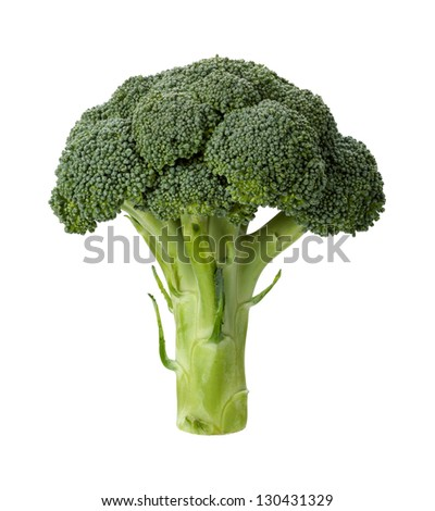 Broccoli isolated on a clean white background - stock photo