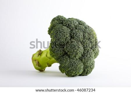 broccoli  on white - stock photo