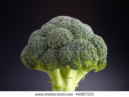 broccoli well lit with a soft light on the dark background - stock photo