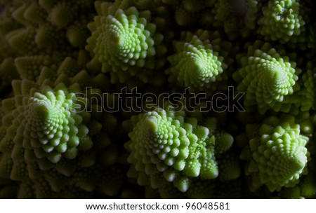 broccolo romaneschi - stock photo