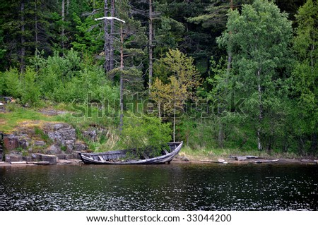 Broken boat with a tree - stock photo