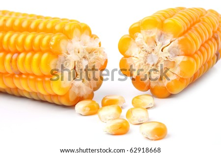Broken corn on a white background. Close up with shallow DOF.