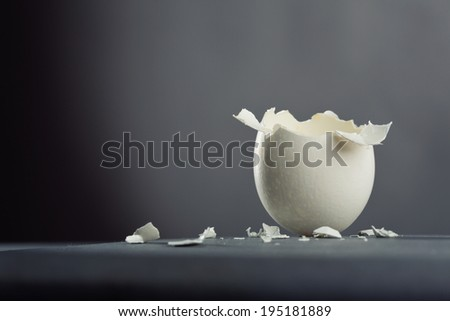 Broken egg isolated on gray background - stock photo