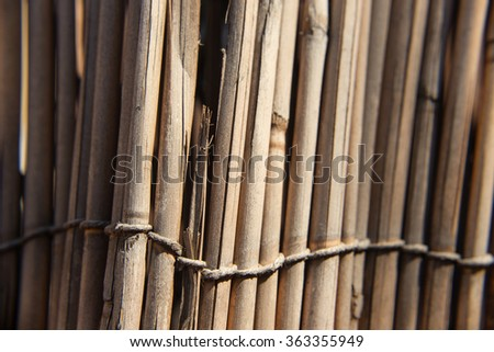 Broken reed fence