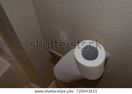 BROKEN TOILET PAPER HOLDER