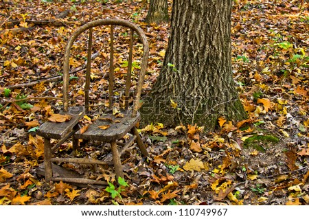 Broken Wooden Chair Sitting In Woods Next To Tree Trunk Covered Autumn Leaves