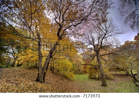 Bronx Botanical Garden , New York city - stock photo
