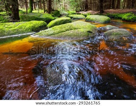 brook in forest , Sumava, Czech republic, Europe - stock photo