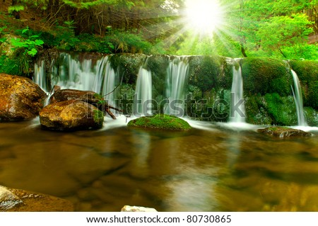 brook on summery day - stock photo