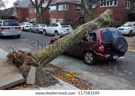 BROOKLYN, NY - NOVEMBER 03: Tree felt down to the car in the Sheapsheadbay neighborhood due to strong wind from Hurricane Sandy in Brooklyn, New York, U.S., on Saturday, November 03, 2012. - stock photo