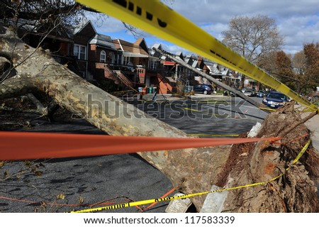 BROOKLYN, NY - NOVEMBER 03: Trees and electric poles felt down to the ground in the Sheapsheadbay neighborhood due to strong wind from Hurricane Sandy in Brooklyn, NY, U.S. on November 03, 2012. - stock photo