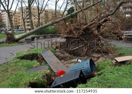BROOKLYN, NY - OCTOBER 30: Tree felt down to the ground in the Sheapsheadbay neighborhood due to flooding from Hurricane Sandy in Brooklyn, New York, U.S., on Tuesday, October 30, 2012. - stock photo