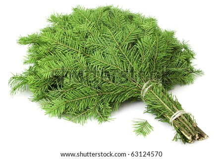 Broom is made of green taiga needles - stock photo