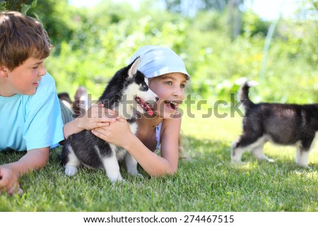 Brother and happy sister lying on the grass with puppies husky - stock photo