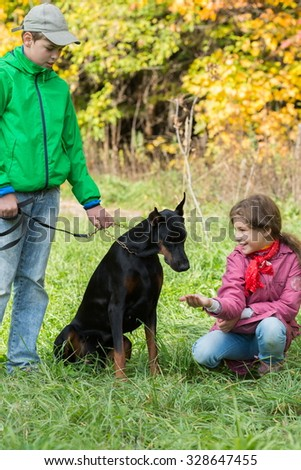 Brother and his sister are feeding the dobermann in the park. - stock photo