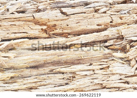 Brown abstract background  with natural texture