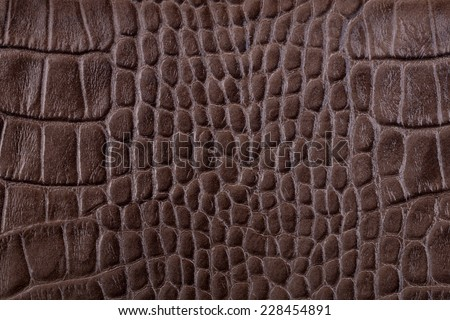 Brown alligator leather details background - stock photo