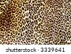 Brown and black leopard pattern - stock photo
