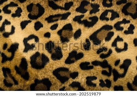 Brown and black leopard pattern. Fur animal print as background. - stock photo