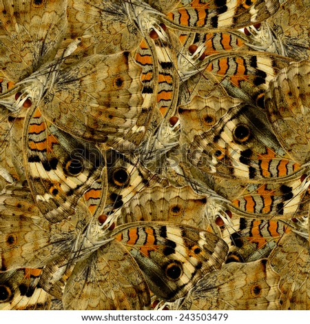 Brown Background Texture made from Blue Pansy Butterflies in a great patterns design - stock photo
