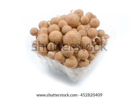 Brown beech mushrooms closeup isolated on white background. - stock photo
