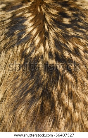 brown,black and white animal fell texture - stock photo