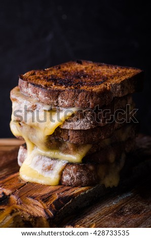 Brown bread toasts with grilled cheese on dark wooden background. Selective focus - stock photo