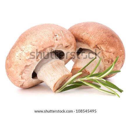 Brown champignon mushroom and rosemary leaves isolated on white background cutout - stock photo