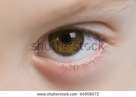 brown child eye close up - stock photo